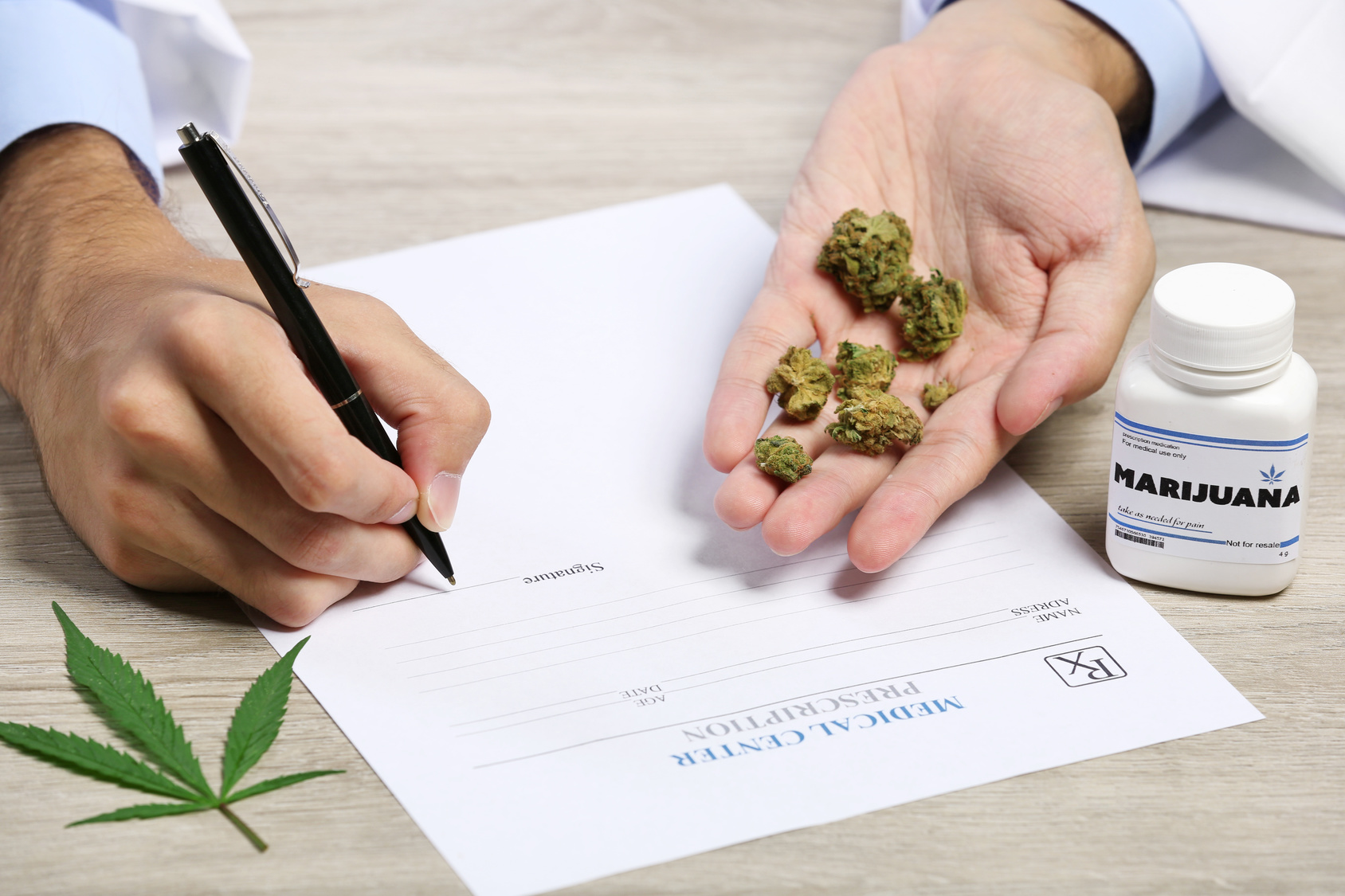 Doctor hand holding dry medical cannabis on table close up