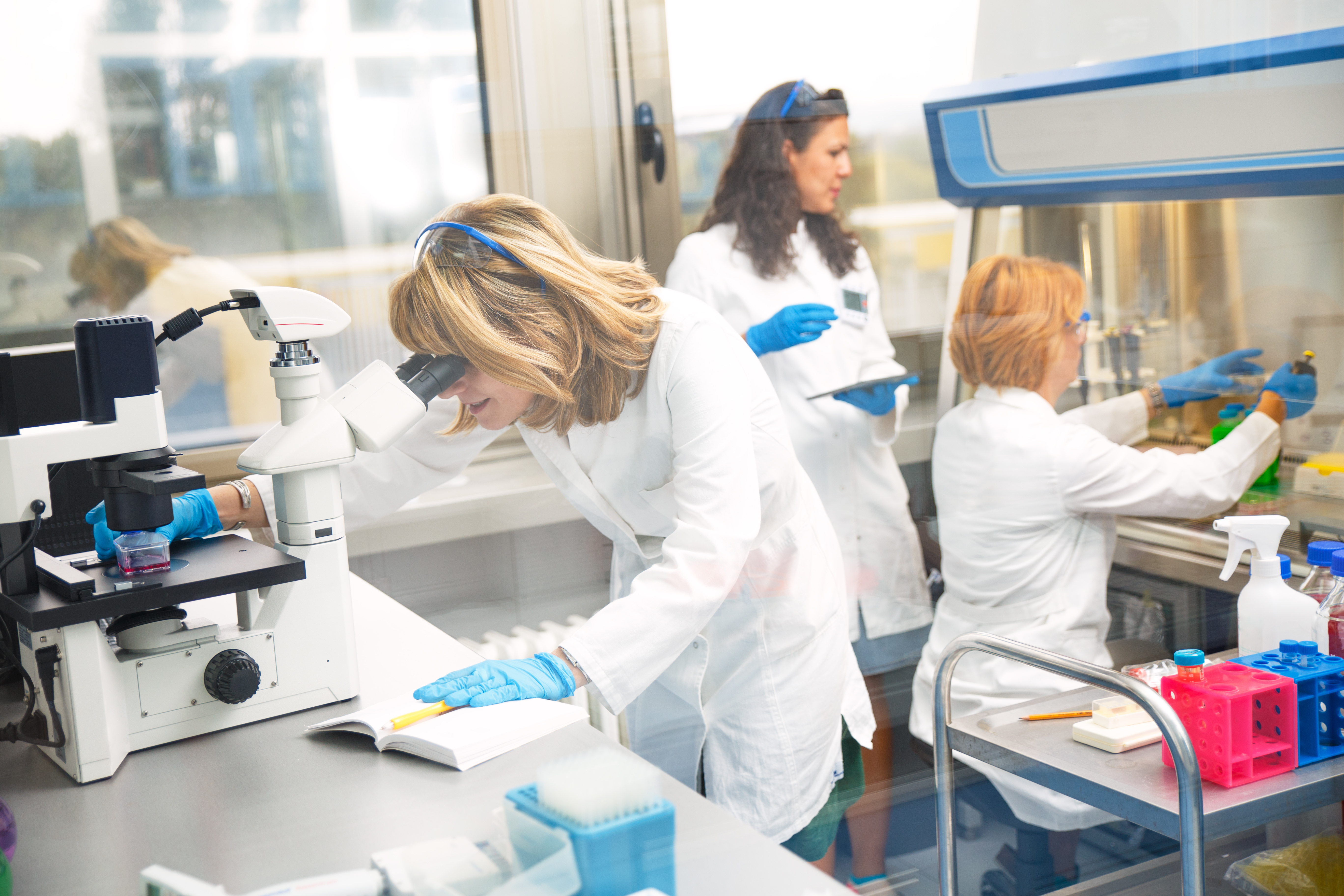 Photo of real female scientists looking into a microscope, Photo taken behind the glass.